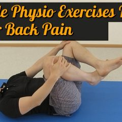 physio for lower back pain